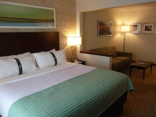 Holiday Inn BWI Airport: King Room