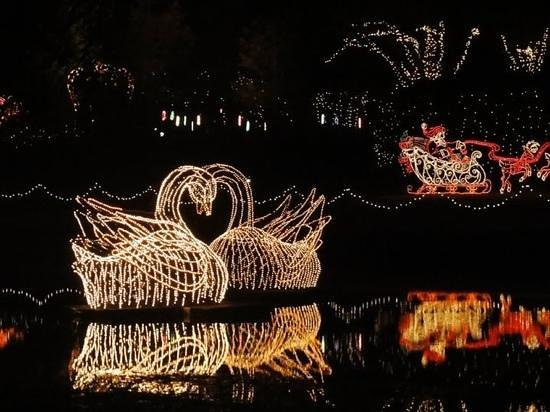 Bellingrath Gardens And Christmas Lights Picture Of