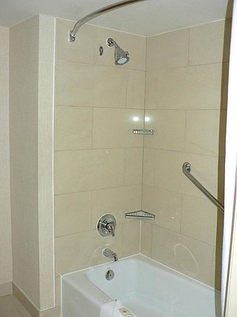 Comfort Inn & Suites Zoo / SeaWorld Area: Decent shower