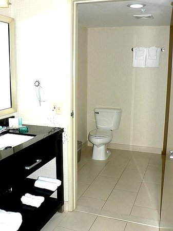 Comfort Inn & Suites Zoo / SeaWorld Area: The Loo