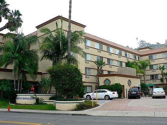 Comfort Inn & Suites Zoo / SeaWorld Area: Exterior view 2