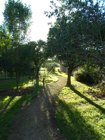 Addo, Νότια Αφρική: Path to pool and dinnng area.