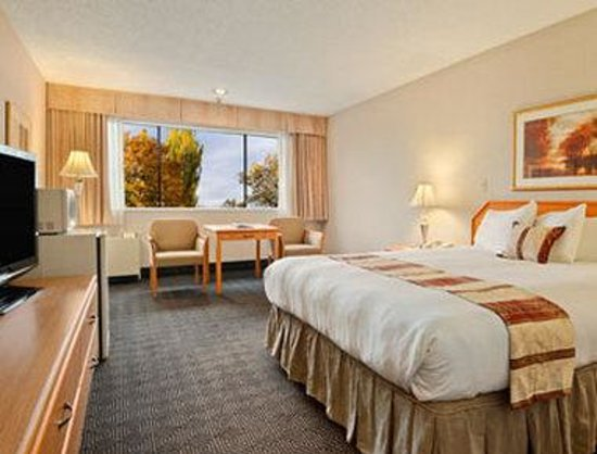 Ramada Vancouver Exhibition Park: Standard One King Bed Room