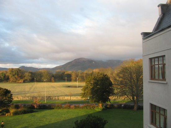 The Brehon: The view