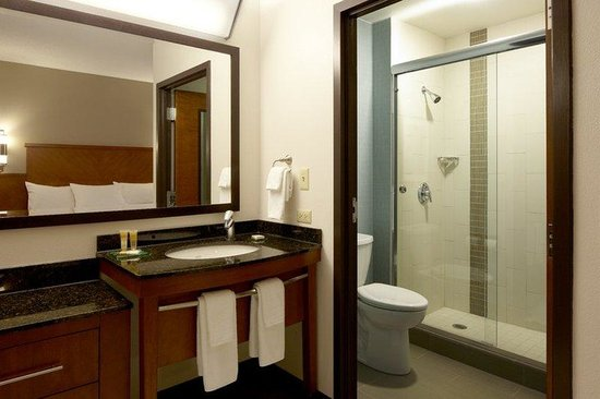 Hyatt Place Daytona Beach - Oceanfront: Bathroom