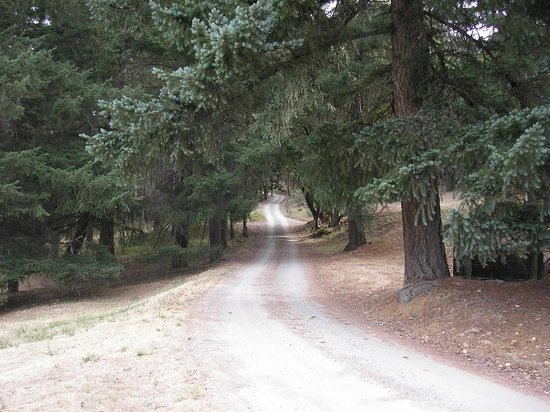 Doubletree Ranch: Short gravel road entrance