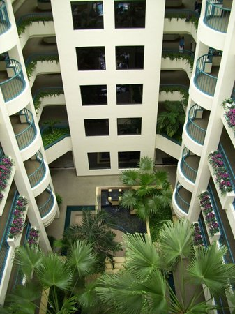 Hilton Garden Inn Boca Raton: Interior of hotel from outside our room