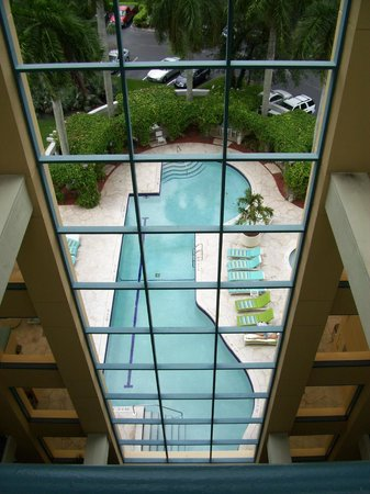 Hilton Garden Inn Boca Raton: The pool