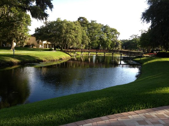 Sawgrass Marriott Golf Resort & Spa: Resort