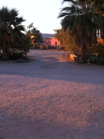 29 Palms Inn: Sunrise, accompanied by local wild life