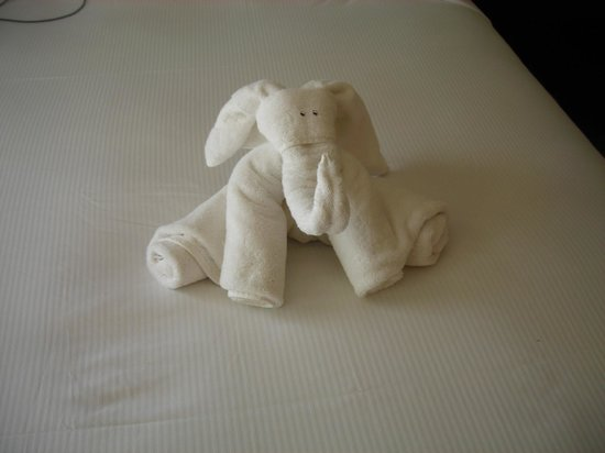 Hilton Papagayo Costa Rica Resort & Spa: Towel animal left by housekeeping