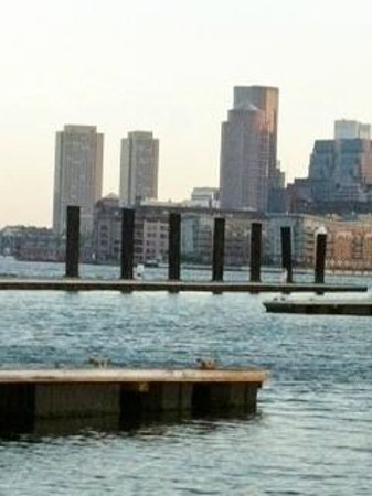 Green Turtle Floating Bed and Breakfast: View of Boston from the dock.