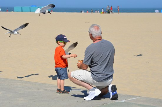 Grand Hotel & Spa: Hubby feeding gulls & little stranger boy who joined in. lol