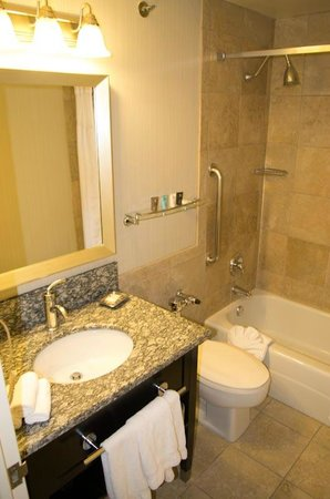 Crowne Plaza Chicago Magnificent Mile : nice bathroom
