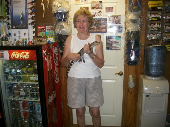 Saint Cloud, FL: Grandmother holding an alligator