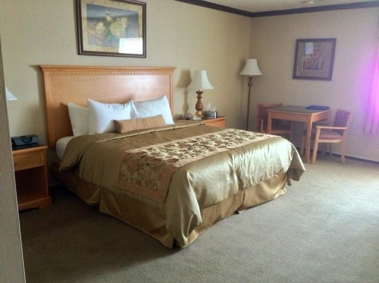 BEST WESTERN Motor Inn: great king bed, nonsmoking room