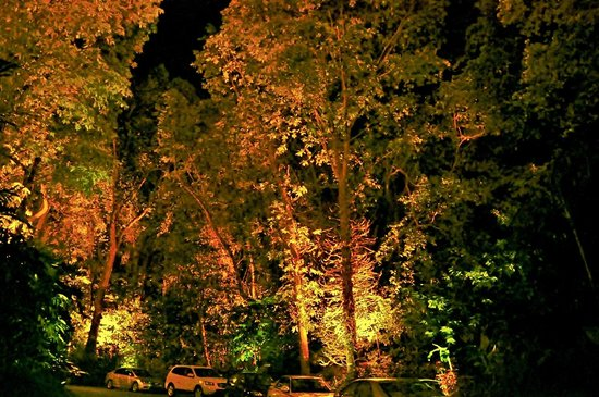Shangri-La's Rasa Sentosa Resort & Spa, Singapore: View walking up hotel path at night