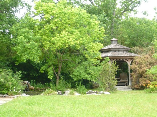 1110 Carriage House Inn: Garden and pool with goldfishes