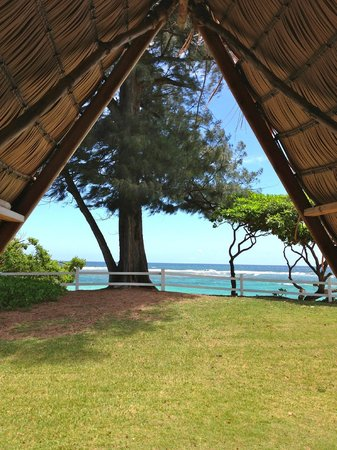 Hanalei Colony Resort: A view from inside the A-frame hut.