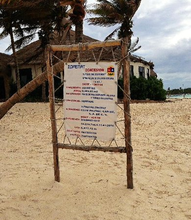 What's the future for Akumal Beach Resort?