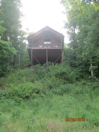 Tree House Cabins at River of Life Farm: Treetop Cabin from the road below