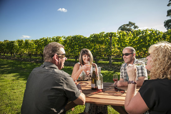 Masterton, New Zealand: Wine tastings in the Martinborough vineyard