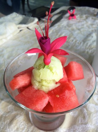 Biltmore Village Inn: Watermelon and Cucumber Ice