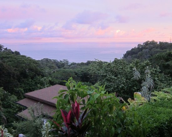 TikiVillas Rainforest Lodge: The Pacific view from villa #3.