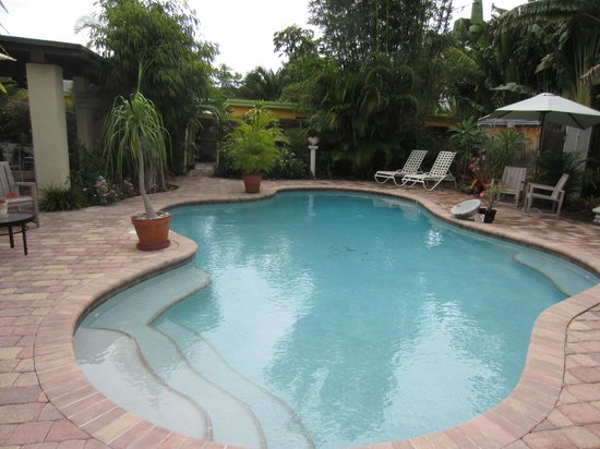 Wilton Manors, FL: The gorgeous pool