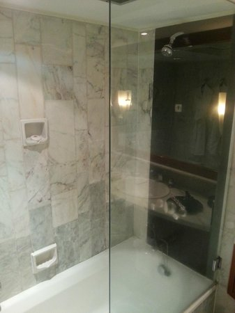 Mandarin Oriental, Manila: shower / bathtub
