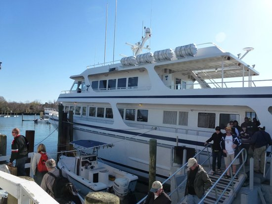 West Barnstable, MA: la nave della Whale Watcher Cruises
