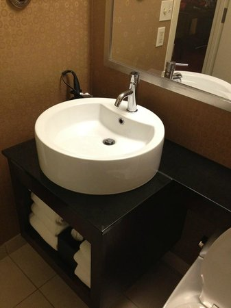 Crowne Plaza Boston-Newton Hotel: Bathroom sink