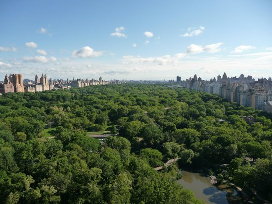 The Helmsley Park Lane : Central Park from room