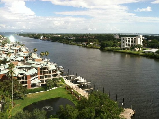 Westin Tampa Harbour Island: View from Room 1118!