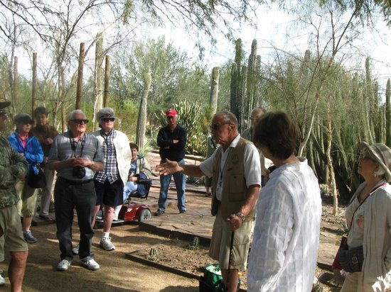 Desert Botanical Garden: tours are offered and are very informative