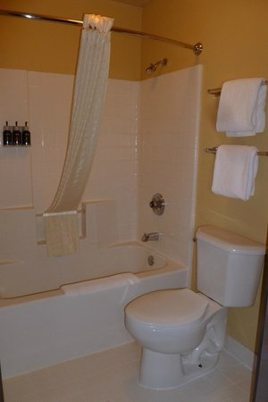 Oxford Suites Portland - Jantzen Beach: Very clean bathroom! Included shampoo, conditioner, and shower gel.
