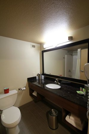 Stratosphere Hotel, Casino and Tower: standard bathroom