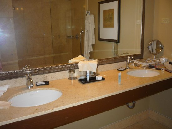 Wyndham Blake Chicago : bathroom