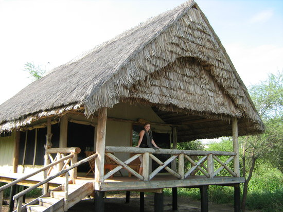 Photo of Roika Tarangire Tented Lodge Arusha