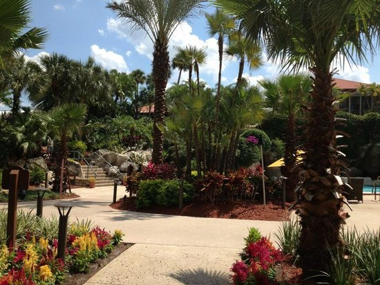 Hyatt Regency Grand Cypress: Beautiful grounds & landscaping
