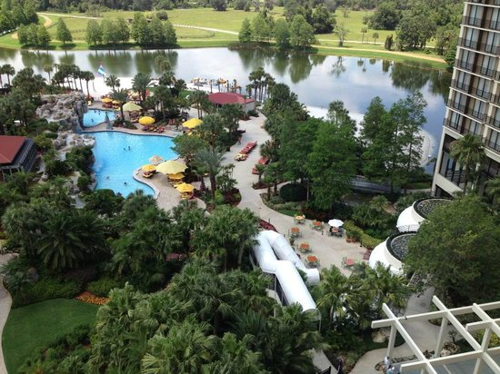 Hyatt Regency Grand Cypress: Poolview from 9th Floor