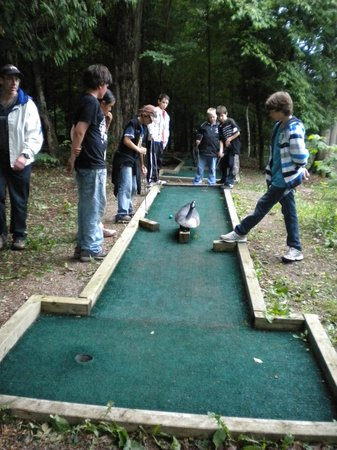 Manitoulin Island, Canada: Enjoy a round of Mini Putt