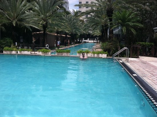 National Hotel Miami Beach: the grounds