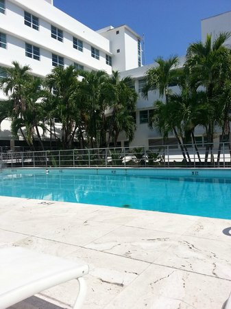 Albion South Beach : The pool.