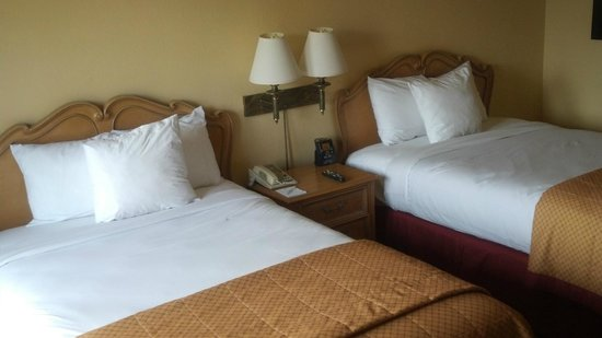 Embassy Suites  New Orleans-Convention Center: beds