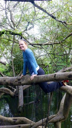 Amazonia Expeditions' Tahuayo Lodge: Tree climbing