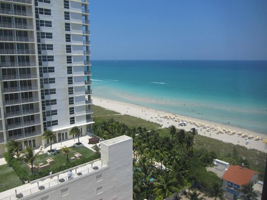 Miami Beach Resort and Spa: vista de la playa