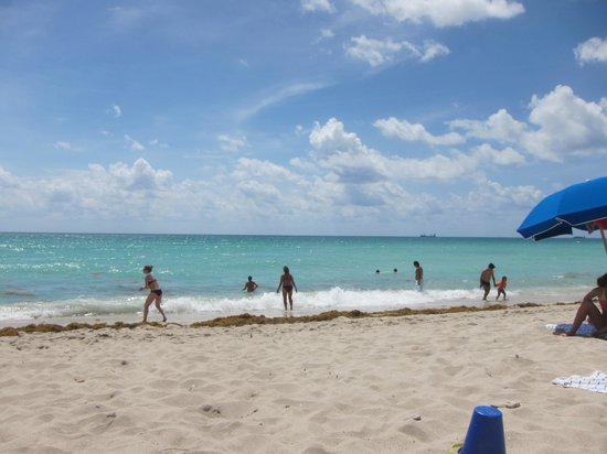 Miami Beach Resort and Spa: playa
