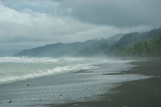 Carate, Costa Rica: May month on the Osa - sooo wonderful