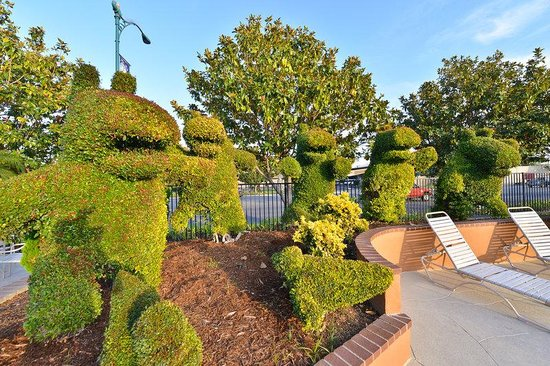 BEST WESTERN PLUS Stovall's Inn: Topiary Gardens Next to Swimming Pool